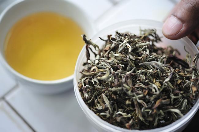 Índia protege o chá Darjeeling da pirataria
