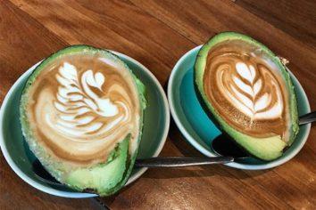 Avolatte: O café na casca de abacate