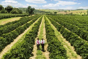 O Projeto Florada e o importante papel das mulheres cafeicultoras